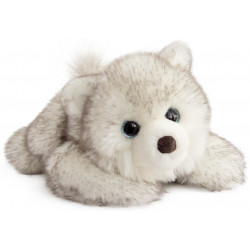 Histoire d'ours - Husky -...